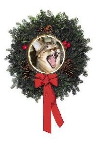 leo wreath